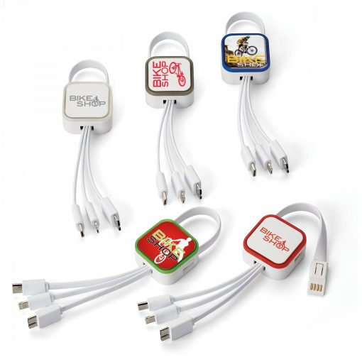Ray 4-In-1 Charging Cable
